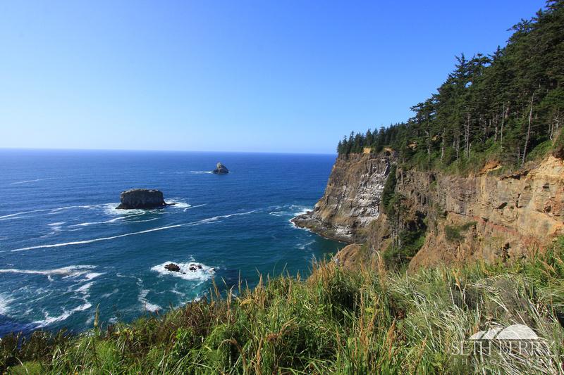 Oregon Coast 5