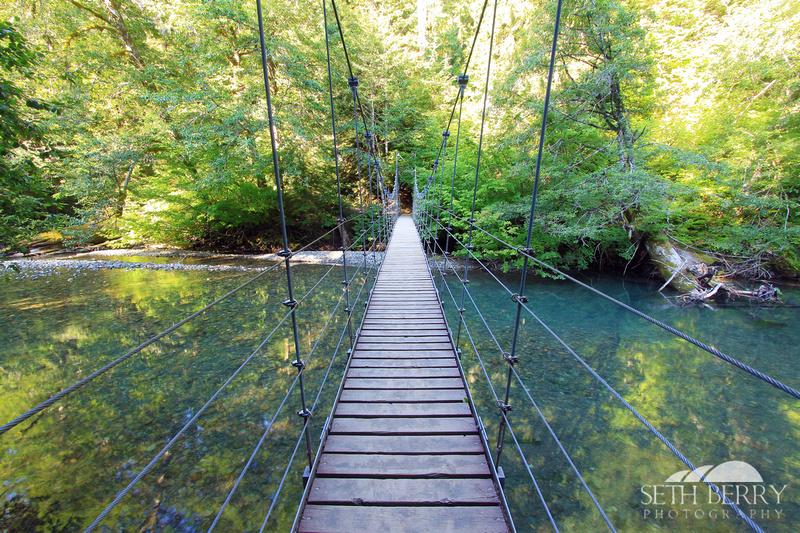 Grove of the Patriarchs Bridge