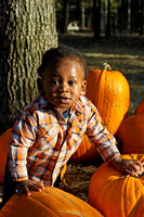Pumpkin Patch Chi 4