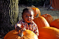Pumpkin Patch Chi 3