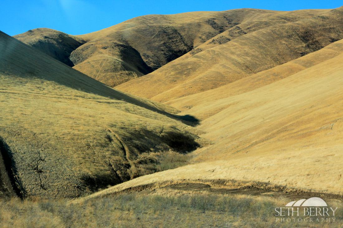 California Golden Hills