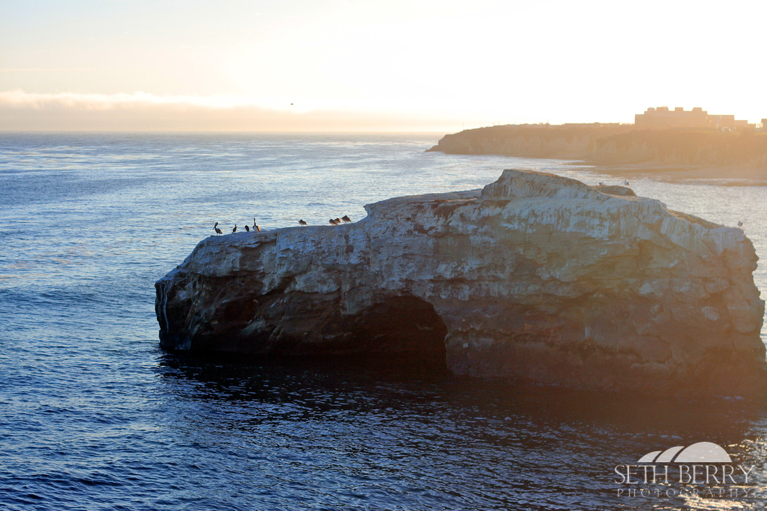 Natural Bridge, Santa Cruz, CA